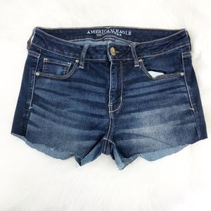 🌈 american eagle AEO | stretch distressed shorts